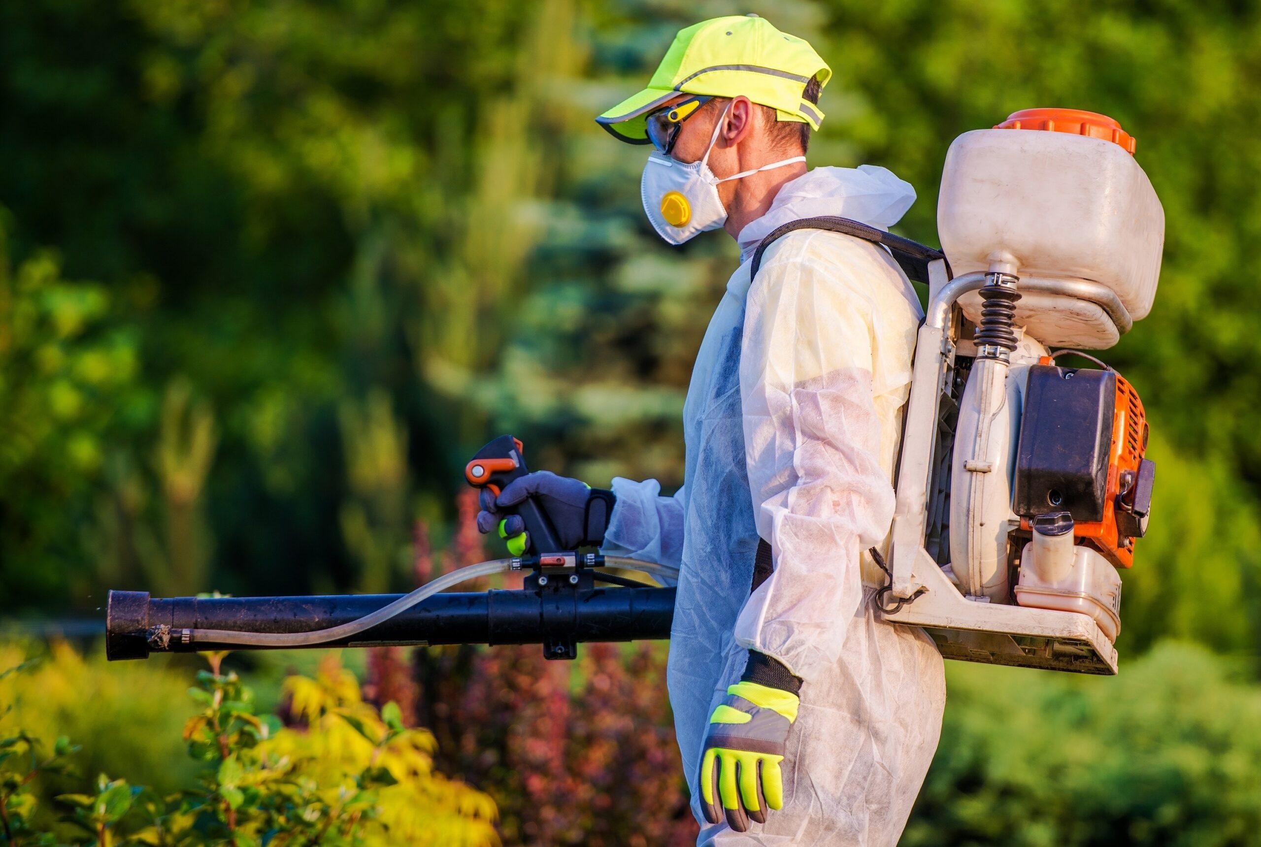 הדברה s-hadbara מדבירי החרקים זריזים עם מלא ידע בתחום שיודעים לאתר איפה יתושים דוגרים תוך כדי שיפוץ בבית המודבר