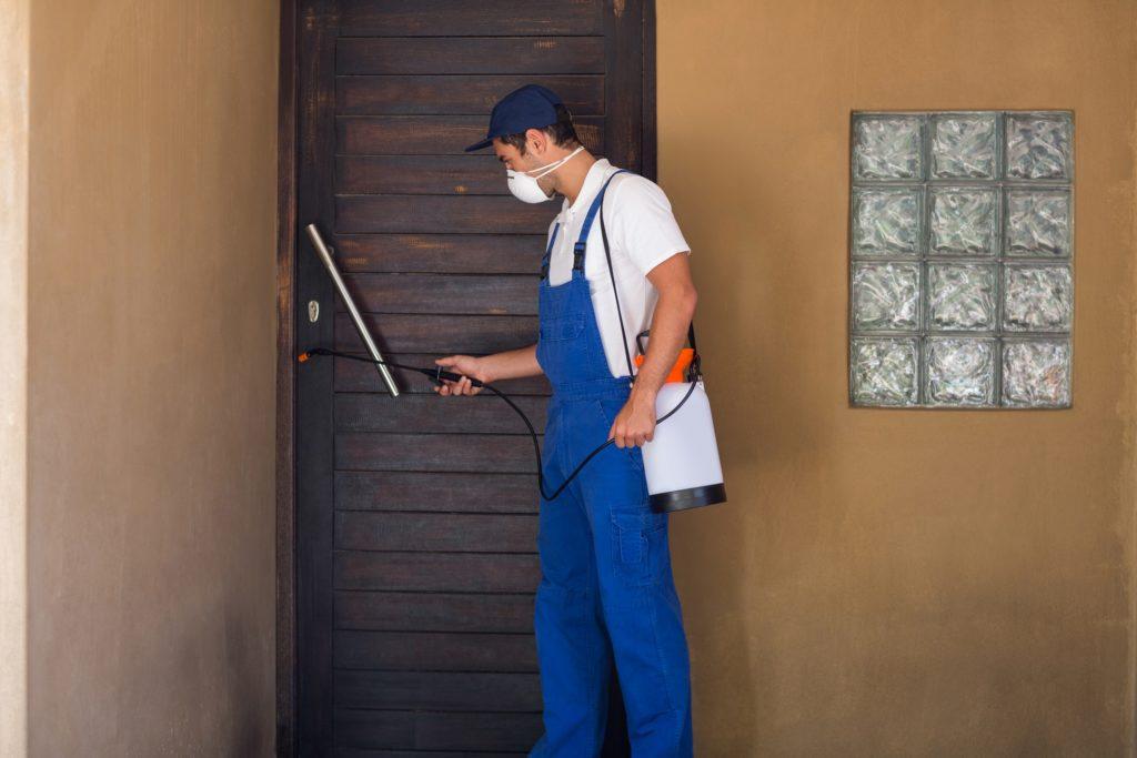 הדברת מזיקים בעלי המקצוע נותנים שירות מהיר ומקצועי עם הרבה וותק שיודעים לתת שירות אדיב ומקצועי, שמומחים לשירותי הדברה תוך כדי שאיבת הביוב