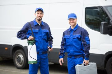 הדברה s-hadbara מדבירים מומחים מנוסים עם הנכונות לעזור שיודעים לתת שירות אדיב ומקצועי, שמומחים לשירותי הדברה תוך כדי שיפוץ בבית המודבר